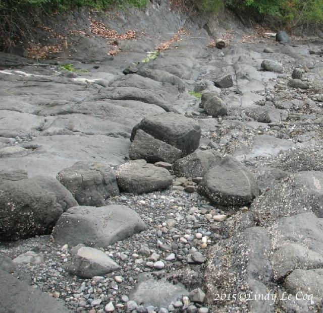 rocks are born 1 - Version 2