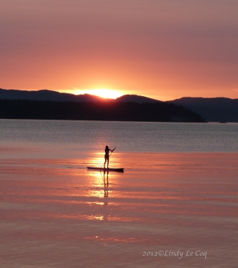 sunset paddler