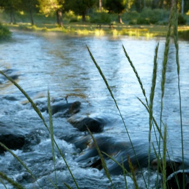 Crescent Creek shot